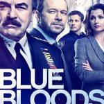 Blue Bloods S10E19 480p WEBRip x264-TFPDL