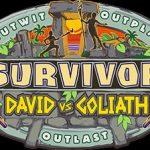 Survivor S38E14 480p HDTV x264-TFPDL