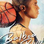 Balboa Blvd 2019 720p WEB-DL x264-TFPDL