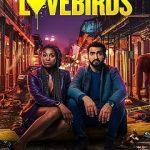 The Lovebirds 2020 720p NF WEB-DL x264-TFPDL